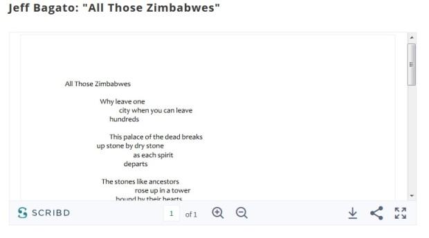 ft-zimbabwe
