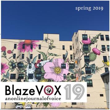 blaze vox 19 front
